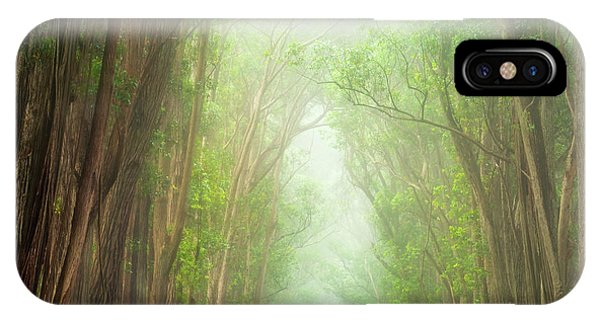 Soft Forest Light IPhone Case