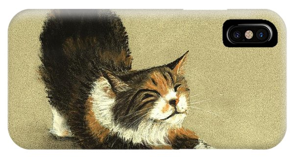 IPhone Case featuring the painting Soft Kitty by Anastasiya Malakhova
