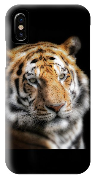 Soft Tiger Portrait IPhone Case