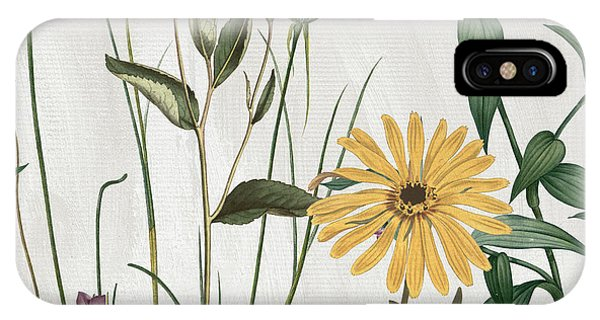 Yellow Flowers iPhone Case - Softly Crocus And Daisy by Mindy Sommers
