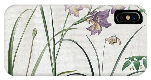 Yellow Flowers iPhone Case - Softly Purple Crocus by Mindy Sommers