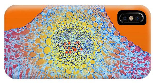 Solar Cells IPhone Case