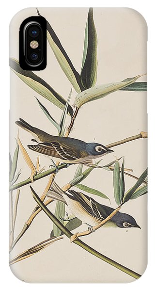 Solitary Flycatcher Or Vireo IPhone Case
