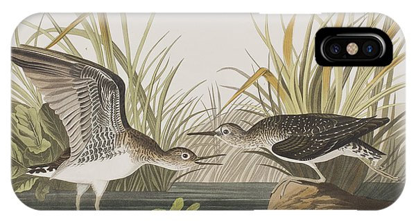 Solitary Sandpiper IPhone Case