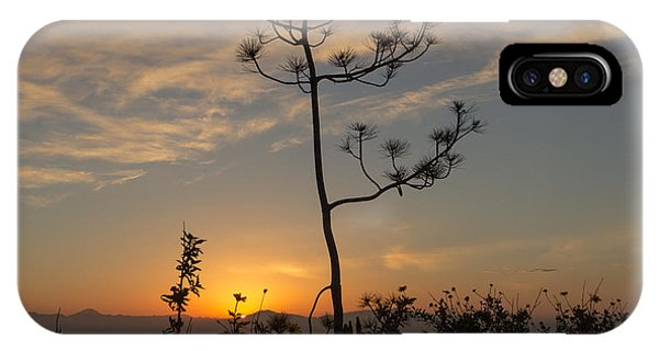 Solitude At Solidad IPhone Case