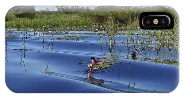 Solitude In The Okavango IPhone Case