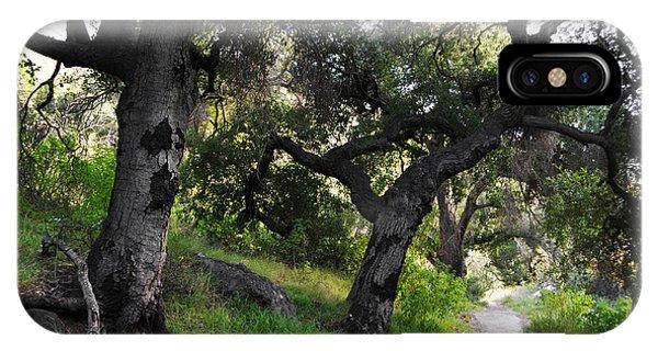 Solstice Canyon Live Oak Trail IPhone Case