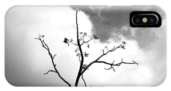 Solstice Dance #3 IPhone Case