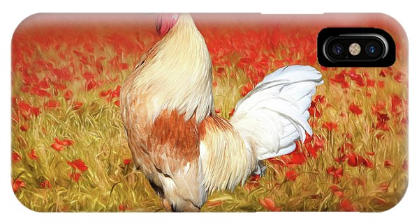 Barnyard Animals iPhone Case - Something To Crow About by Donna Kennedy