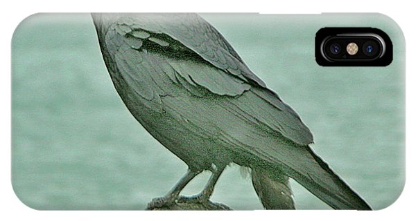 Something To Crow About IPhone Case
