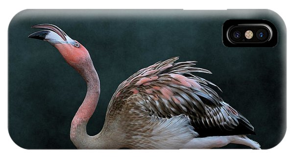 Song Of The Flamingo IPhone Case