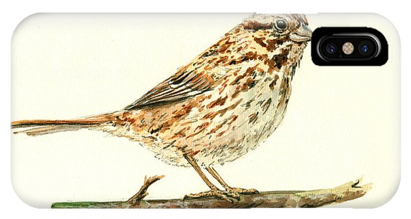 Sparrow iPhone Case - Song Sparrow by Juan  Bosco