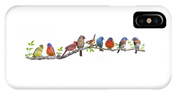 Songbirds On A Leafy Branch IPhone Case