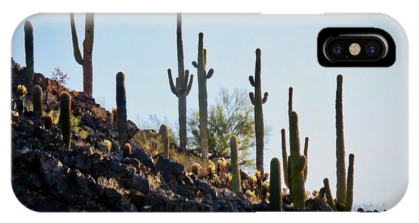Sonoran Desert Saguaro Slope IPhone Case