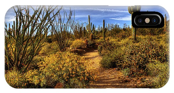 Sonoran Spring 01 IPhone Case