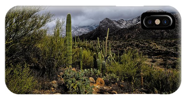 IPhone Case featuring the photograph Sonoran Winter No.1 by Mark Myhaver