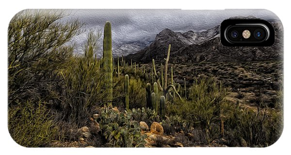 IPhone Case featuring the photograph Sonoran Winter No.3 by Mark Myhaver