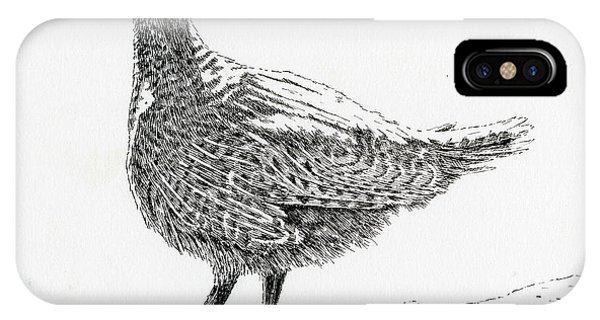 Sooty Grouse IPhone Case