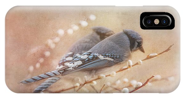 Avian iPhone Case - Soulmates by Susan Capuano