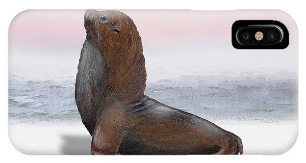 South American Fur Seal Arctocephalus Australis Male - Marine - Seebaer  IPhone Case