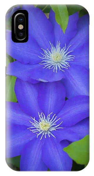 South Carolina Color IPhone Case