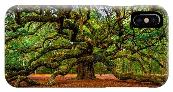 Angel Oak In Charleston IPhone Case