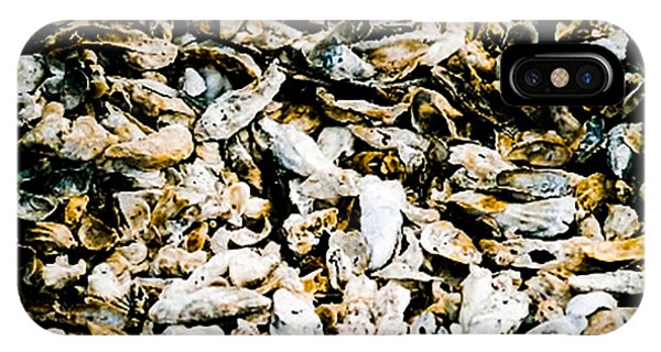 iPhone Case - Southern Shells by Cynthia Leaphart