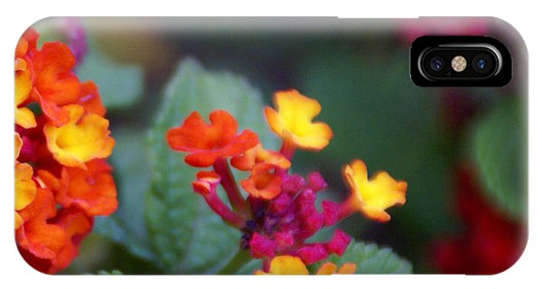 IPhone Case featuring the photograph Spanish Flag by Linda Shafer