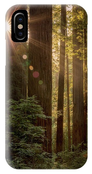 Sparkle In The Redwoods IPhone Case