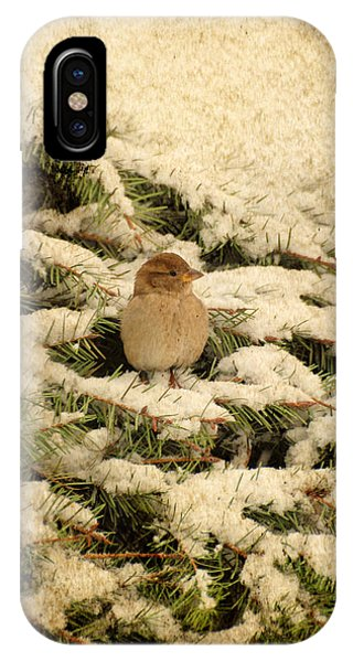 IPhone Case featuring the photograph Sparrow In Winter II - Textured by Angie Tirado