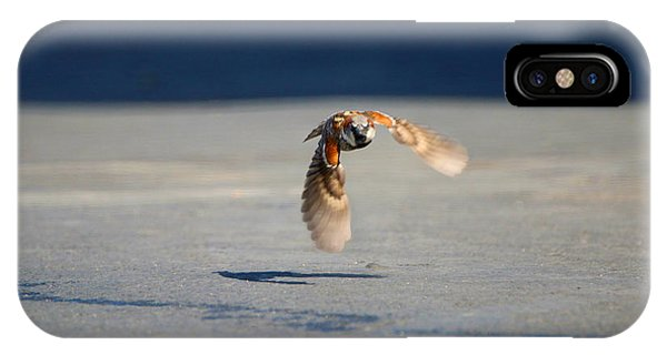 Sparrow On A Mission IPhone Case