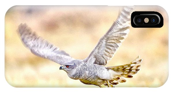 Sparrowhawk IPhone Case