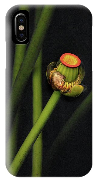 IPhone Case featuring the photograph Spatterdock by Michael Kirk