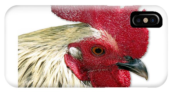 Special Edition Key West Rooster IPhone Case