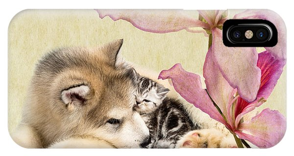 iPhone Case - Special Friends by Cynthia Leaphart