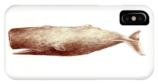 Whales iPhone Case - Sperm Whale by Michael Vigliotti
