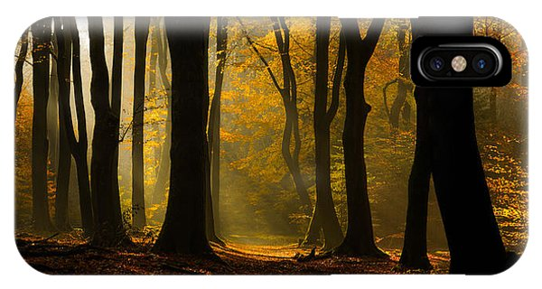 Tree iPhone Case - Speulder Panorama by Martin Podt