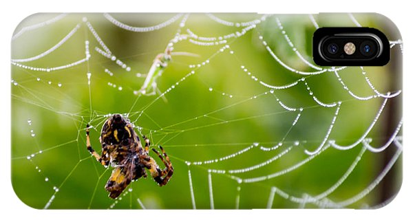 Spider And Spider Web With Dew Drops 05 IPhone Case