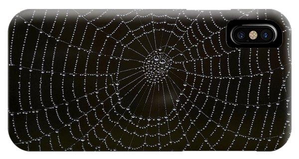 Spider Cobweb  IPhone Case