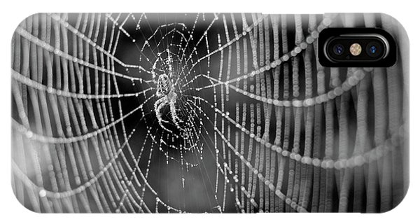 Spider In A Dew Covered Web - Black And White IPhone Case