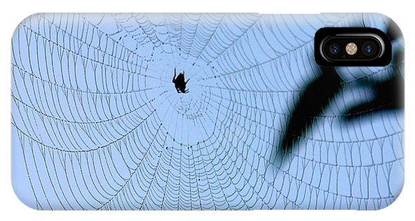 Spider In Web IPhone Case