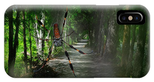 IPhone Case featuring the photograph Spider Road by Harry Spitz