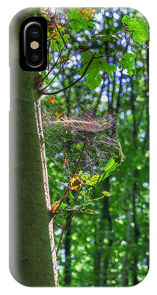 Spider Web In A Forest IPhone Case