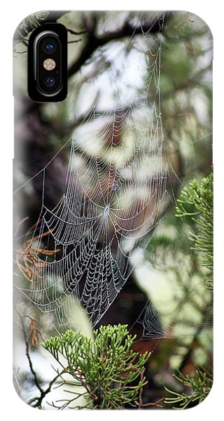 IPhone Case featuring the photograph Spider Web In Tree by Willard Killough III