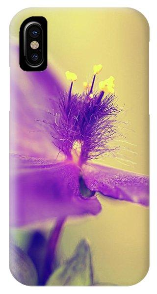 Tradescantia iPhone Case - Spiderwort by Caitlyn Grasso