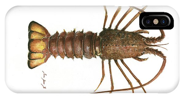 Claws iPhone Case - Spiny Lobster by Juan Bosco