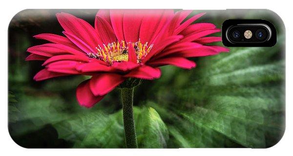 Spiral Pink Flower Focus IPhone Case