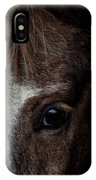 Equine iPhone Case - Spirit by Paul Neville