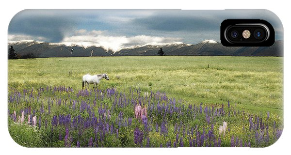 Spirit Pony In High Country Lupine Field IPhone Case