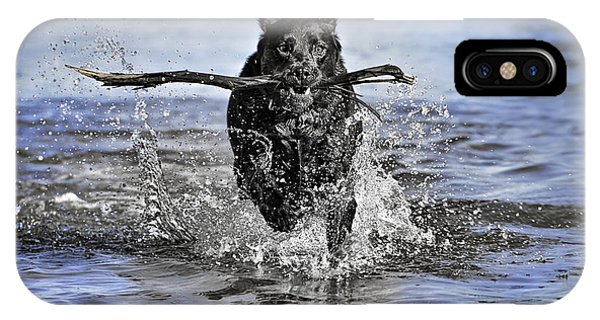 Splashing Fun IPhone Case